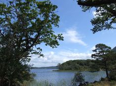 Idylle: Killarney Nationalpark